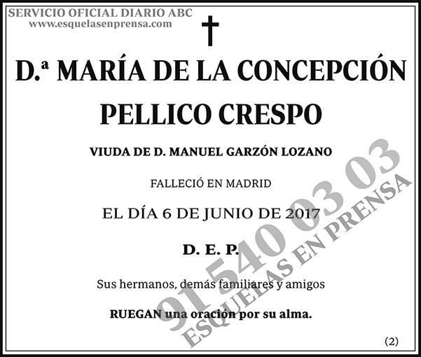 María de la Concepción Pellico Crespo